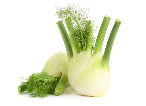 Fenchel macht fit