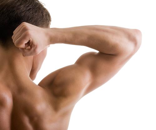 Eiweiß sorgt für einen schnellen Muskelaufbau