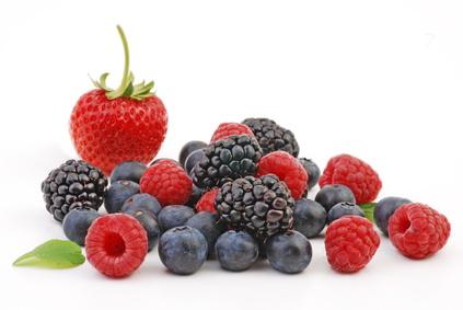 Erdbeere, Himbeere, Heidelbeere und Brombeere
