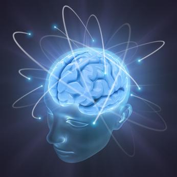 Gehirn in einem Kopf