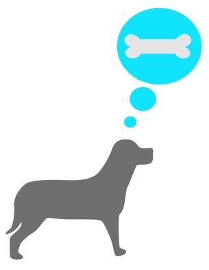 Hund träumt von Knochen