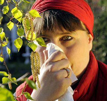 Frau mit Taschentuch vor Birkenpollen
