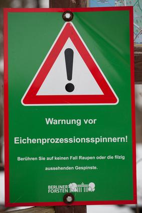 Schild zur Warnung vor Eichenprozessionspinnern