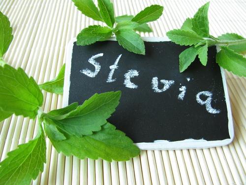 Stevia: Eine neue Wundersüße?