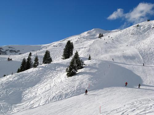 snowboard dual