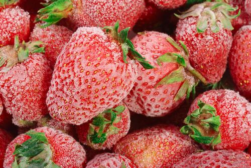 Norovirus durch Erdbeeren