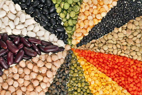 Protein muskelaufbau