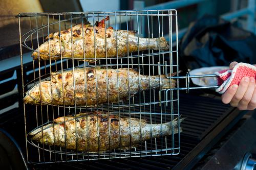 Fischhalter Grill